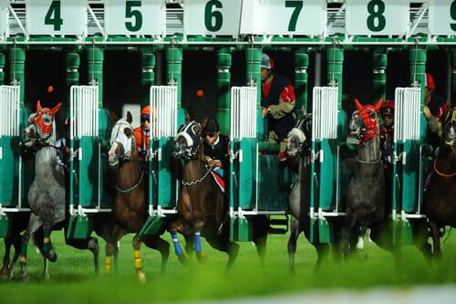 Pferdewetten Startboxen