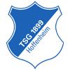 TSG Hoffenheim Wappen