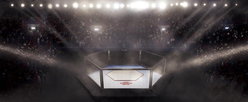 UFC Wetten Ring